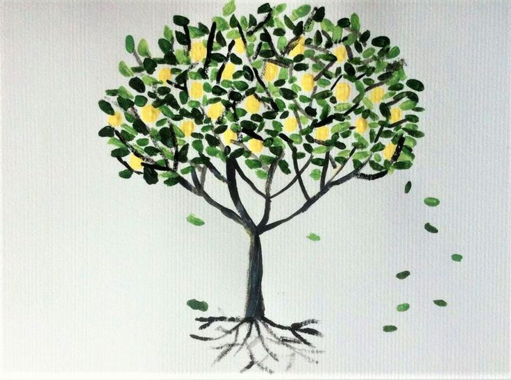 a lemon tree