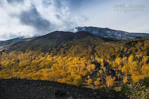 Panoramica dell'Etna dai Monti Sartorius