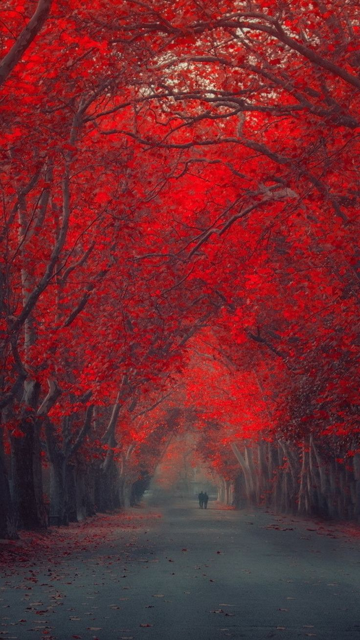 TAP AND GET THE FREE APP! Nature Art Stylish Red Trees