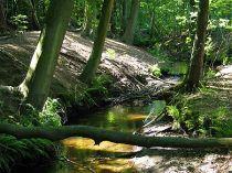 Mooie route over een van de mooiste stukken van de veluwe.  http://www.gsnel.nl/wandelen/wandeling.php?id=59
