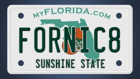 Awesome 60 banned license plates in Florida Minimalist - florida handyman license Review