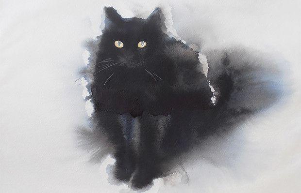 Endre Penovác e seus gatos pretos aquarelados