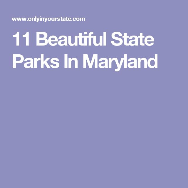 11 Beautiful State Parks In Maryland