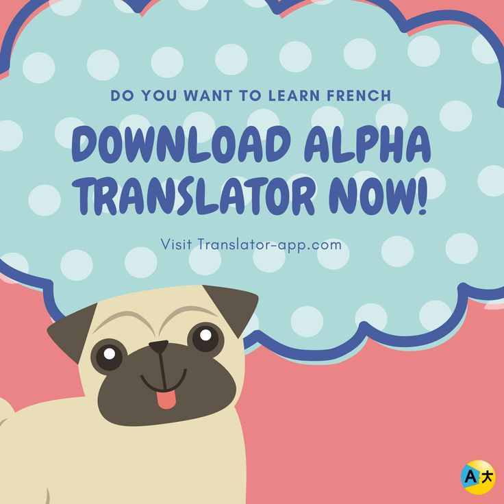 Listen to this pup and get the best translator app now