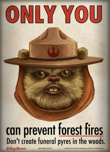 Jub jub!Ewok, Parks And Recreation, Smokey Bears, Fire Safety, Teddy Bears, Forests Fire, Star Wars, Stars Wars, Starwars