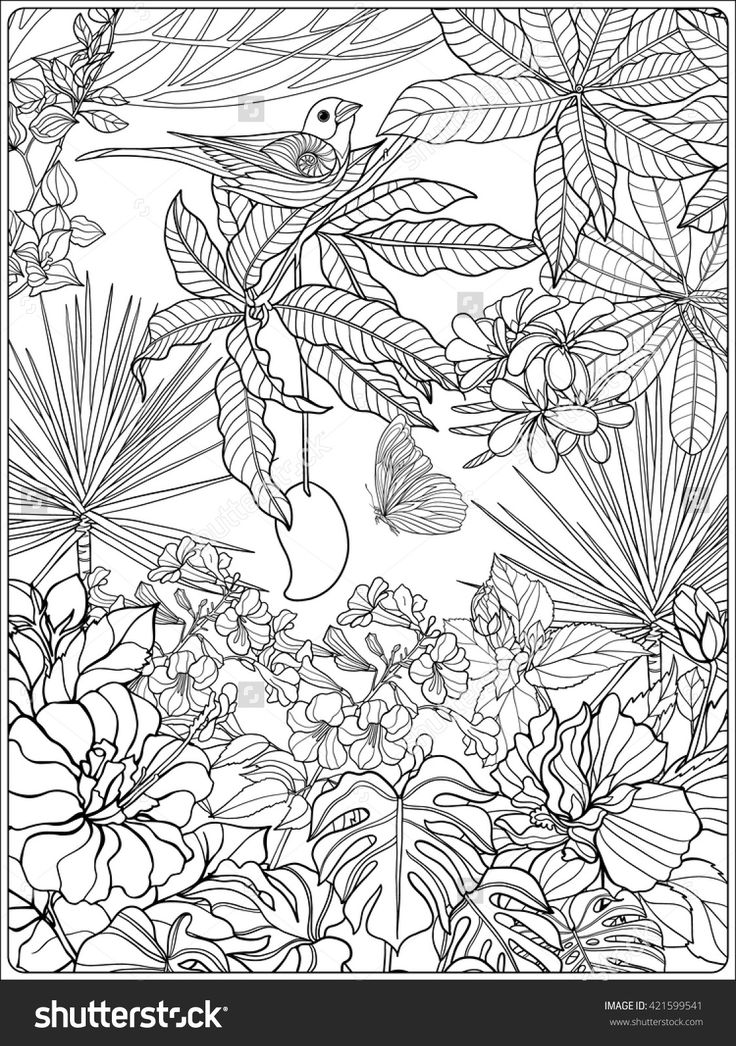 tropical birds and garden coloring page for adults shutterstock 421599541