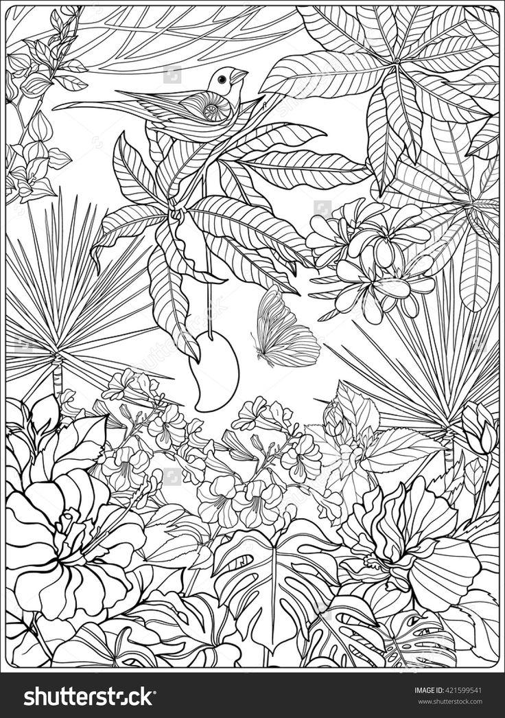 Tropical Wild Birds And Plants Tropical Garden Collection