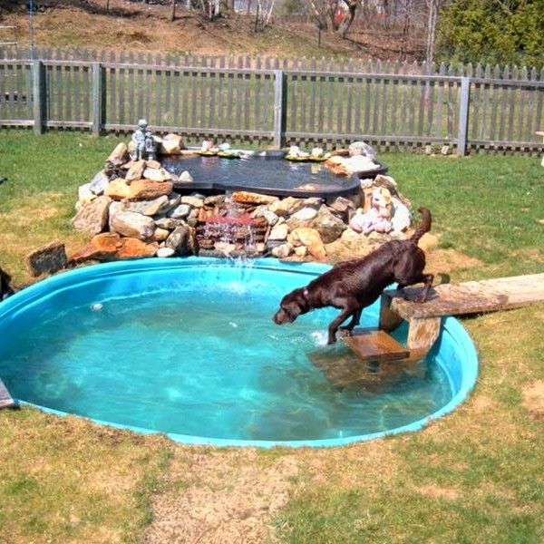 The 25 best dog kennels ideas on pinterest hotels that for Koi fish in kiddie pool