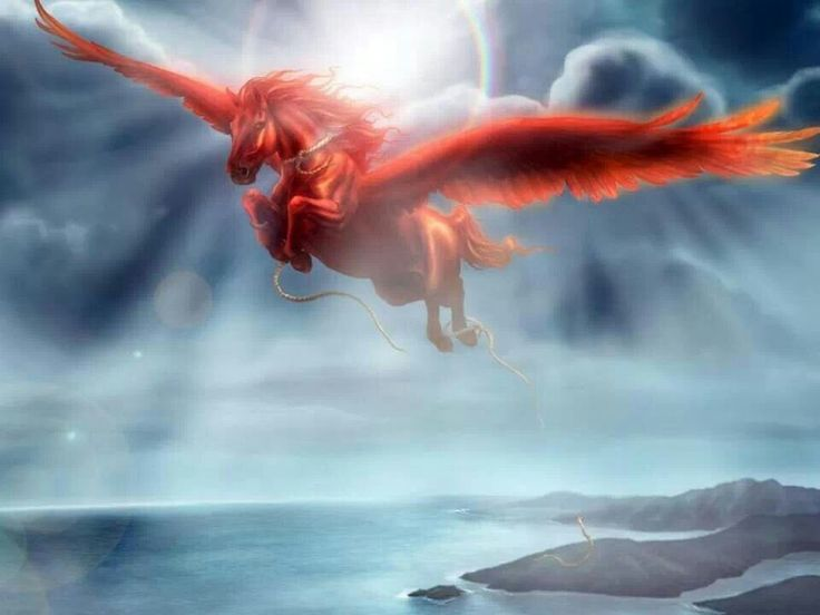 Let Pegasus rescue all the horses from mans cruelty, may they all fly free.