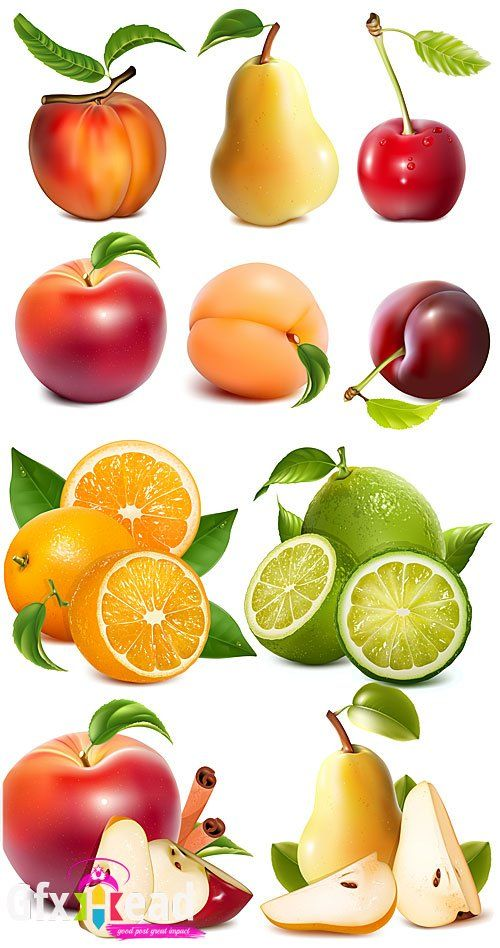 Apple, pear, peach, orange, fruit vector » Gfxhead - Download Graphics Sounds Vectors Tutorials Scripts Movies
