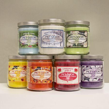 Pet Odor Exterminator Candle... These are the BEST! And that's saying something coming from someone with 3 dogs and 2 cats ;) Get yours at Animal Care Extraordinaire, Stuart, FL