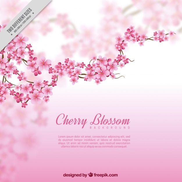 fundo desfocado com filial e flores de cerejeira Vetor grátis