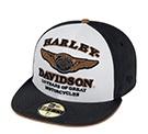 limited-edition-110th-anniversary, Harley-Davidson anniversary, 110th hat, anniversary hat, beanie, knit hat, Harley Davidson hat, Harley Davidson knit hat, Harley beanie, limited 110th, 110th, new Harley beanie, new Harley knit cap