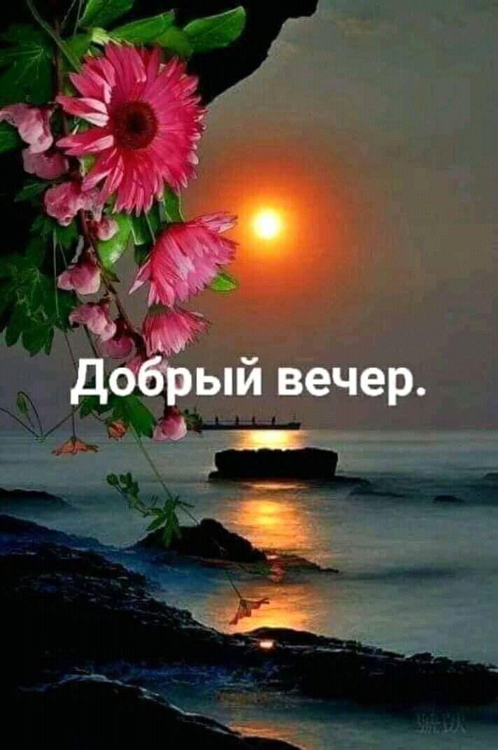 Картинки пожелания доброго вечера и спокойной ночи