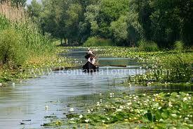 #trips in Danube Delta, Romania