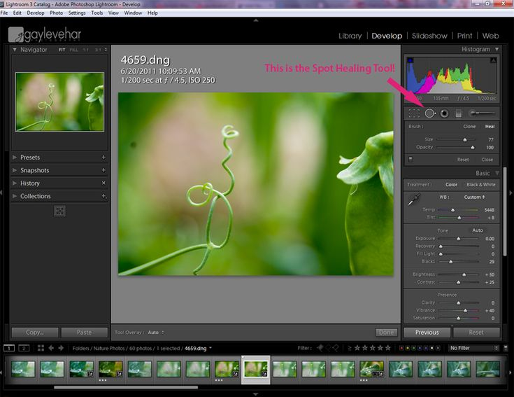 How Lightroom's Spot Healing Tool Saved My Life | Pretty Presets for Lightroom