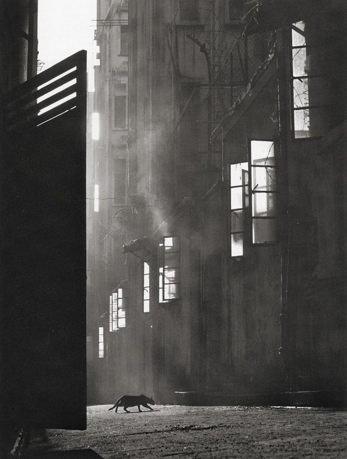 HONG KONG by Fan Ho