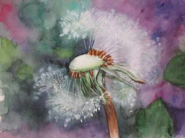 Fleur de pissenlit - Aquarelle -