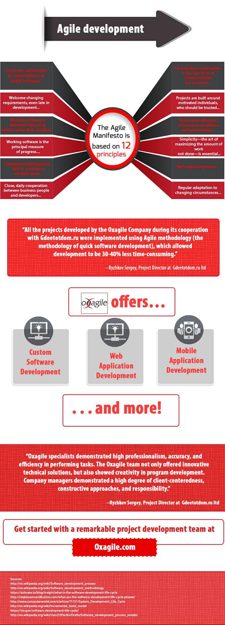 Software project management