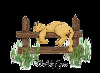 Animierte Gemischte Gifs: Gute Nacht - Gif-Paradies