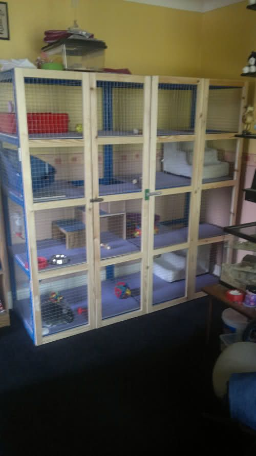 Diy indoor rabbit hutch the image kid for Diy hutch plans