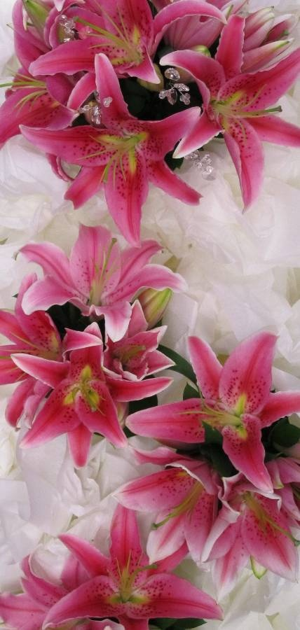 Fragrant pink stargazer lilly bouquets with bling