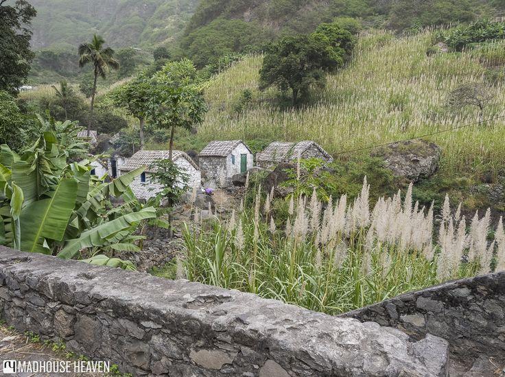 Small white stone houses in the plantation, in The Three Valleys, Fajã de Coculi, Santo Antao, Cape Verde.