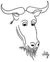 El derecho a leer por Richard Stallman