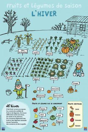 Culmination et légumes – Hiver