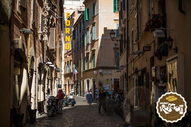 Via dei Chiavari, on the left the Antico Forno Roscioli. We are in the center of Rome, near Campo dei Fiori
