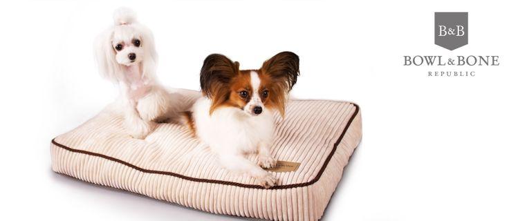 legowisko ze sztruksu dla psa Amber od Bowl&Bone Republic beżowe http://www.animalpresent.pl/