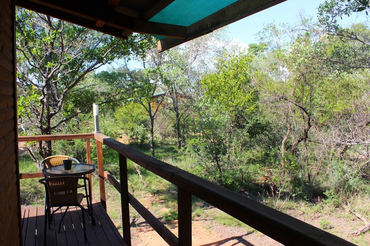 The view from one of our chalets - DIMA BUSH CAMP  Holidays and Safaris