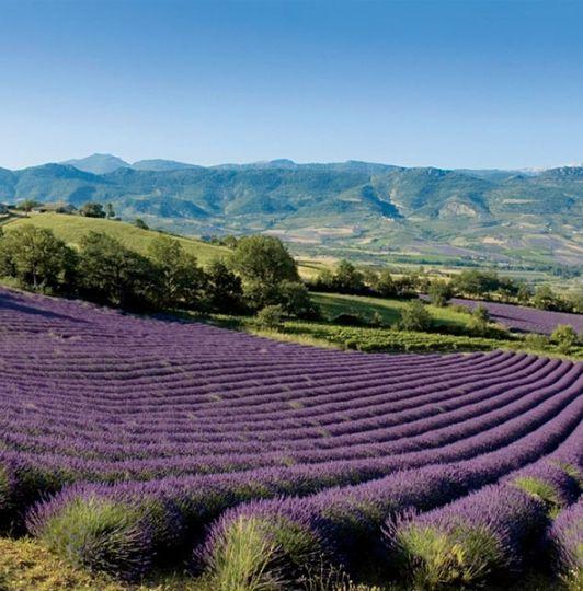 Terre Blanche Hotel Spa Golf Resort 5 Etoiles en Provence France