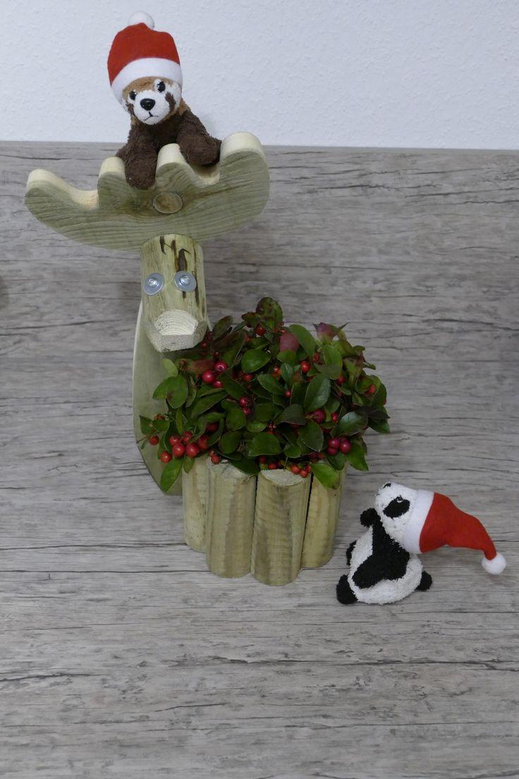 Elch mit Blumentopf, Weihnachtsmarkt, Möbel Kraft, Deko, Weihnachten, Bad Segeberg