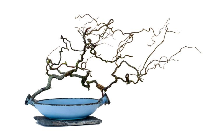 Large Bowl Twisted Branch - Stone  Dylan Vaughan Photography