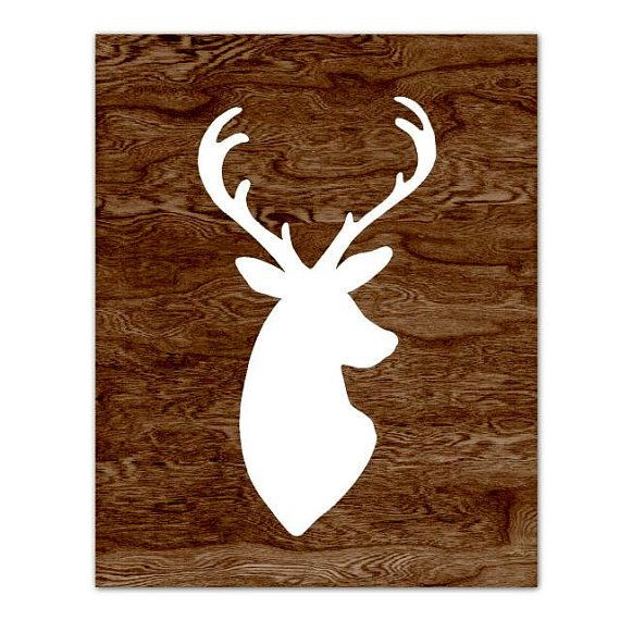 1000 Ideas About White Deer Heads On Pinterest Faux