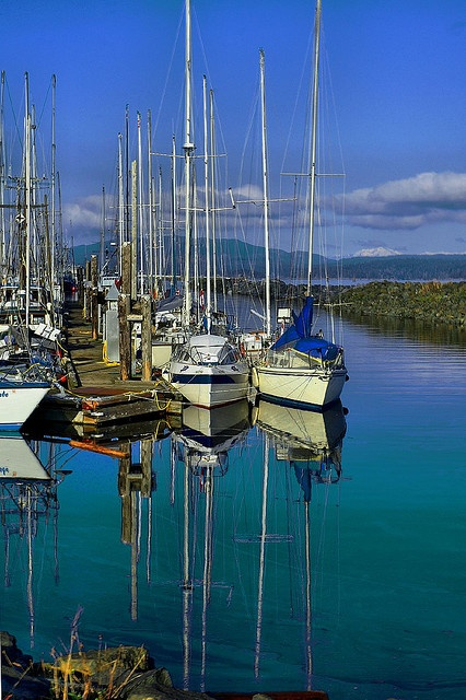 Some pleasure boats in the Campbell River Marina.
