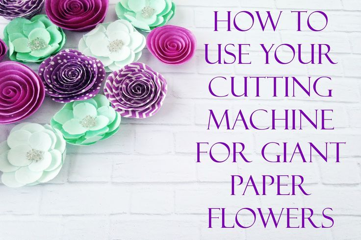 How to Upload a SVG to Cricut Design Space and layout giant flower templates for cutting.