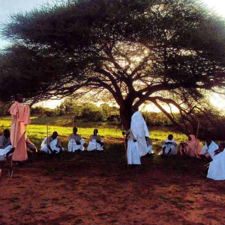 Somali elders meeting under a tree