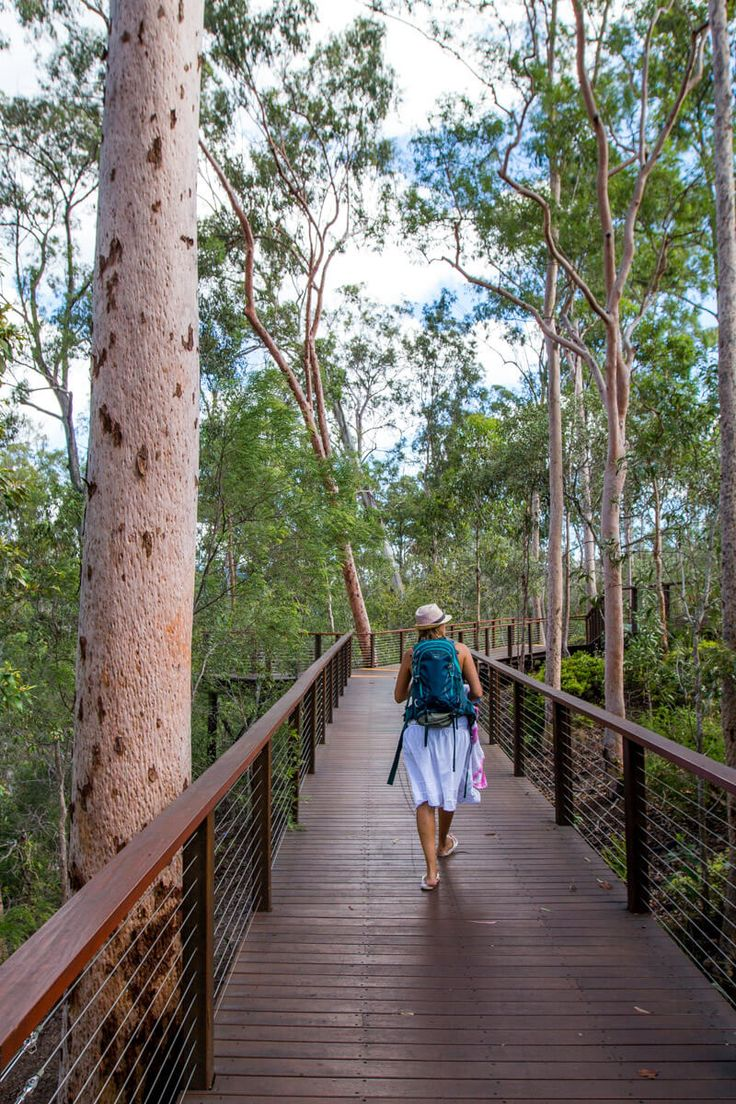 Robelle Domain - things to do in Ipswich, Queensland, Australia