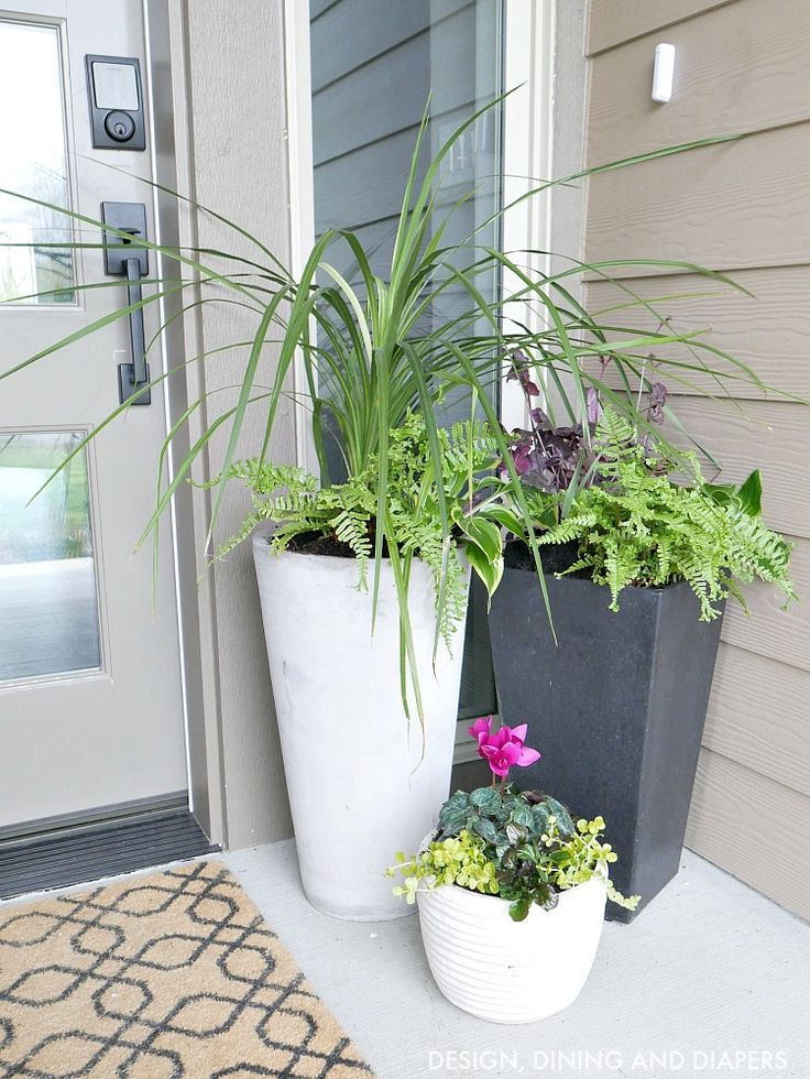 17 best ideas about front door planters on pinterest front porch planters front door plants. Black Bedroom Furniture Sets. Home Design Ideas
