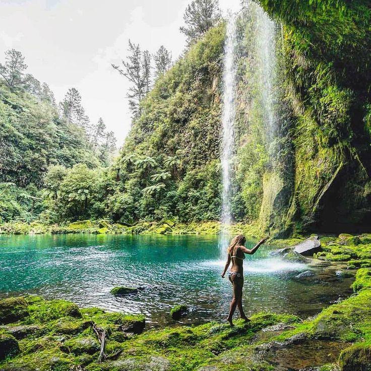 25 Beautiful Tauranga New Zealand Ideas On Pinterest New Zealand Destinations New Zealand