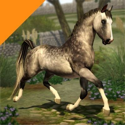 Real Horses - Dapple Gray (Remy Martin) by LittleV - The Exchange - Community - The Sims 3: