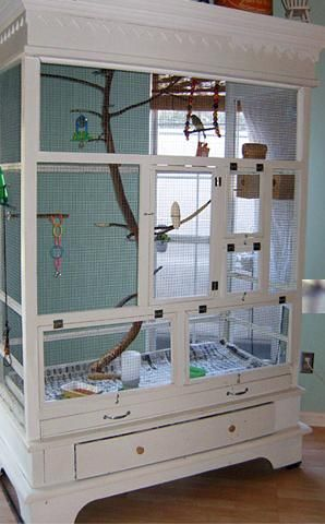 25 Best Ideas About Diy Bird Cage On Pinterest Pet Bird
