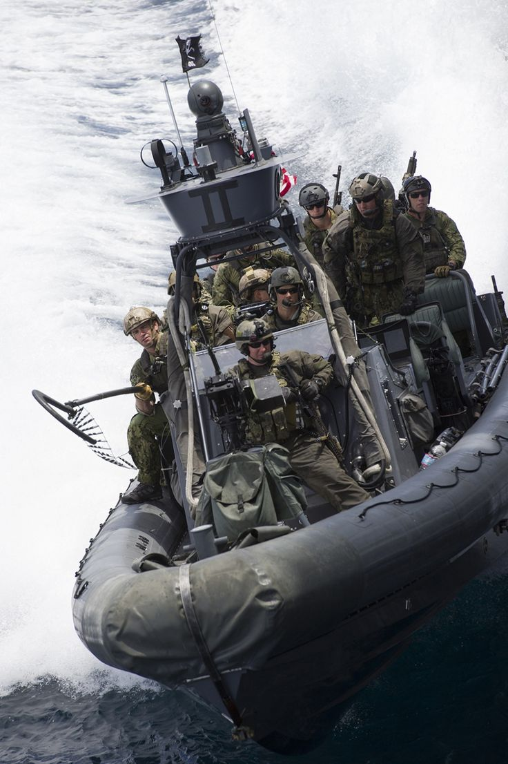 US Navy SEAL Assault Team (1020x1533)