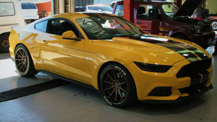 Eastside Mustang Enhancement Show Car GT Stripes