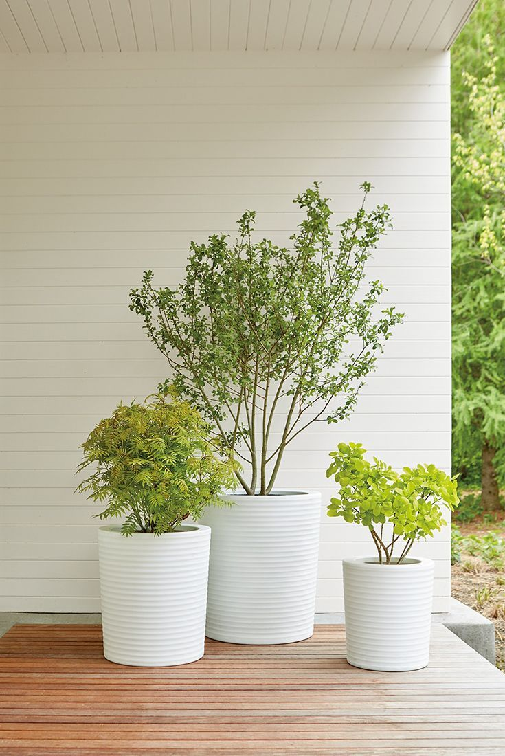 modern planters.  best modern planters images on pinterest  modern planters