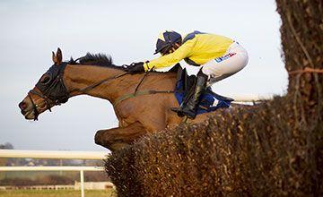 Three horses who could win the Irish Grand National  https://www.racingvalue.com/three-horses-who-could-win-the-irish-grand-national/