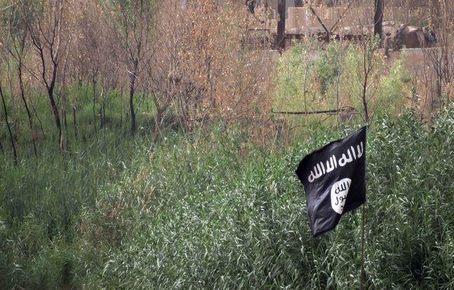 Daesh: Deux femmes d'un recruteur français mises en examen après leur expulsion de Turquie