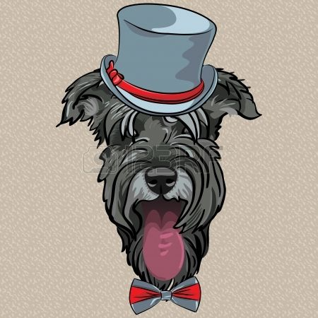 vector hipster dog Schnauzer breed in a gray hat and bow tie Stock Vector